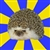 Disapproval Hedgehog
