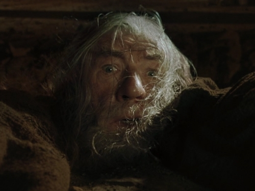 gandalf run you fools closeup
