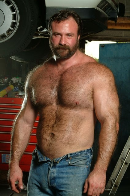 Bear gay man picture