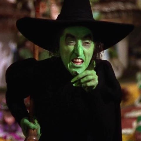 wicked witch of the west from wizard of oz meme generator