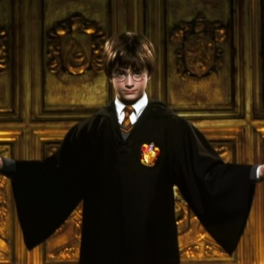 Harry Potter Come At Me Bro