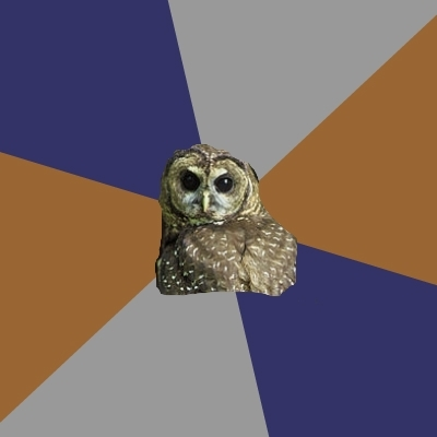 Nursing School Spotted Owl