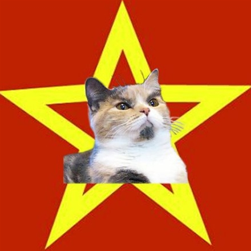 Lenin Cat Red