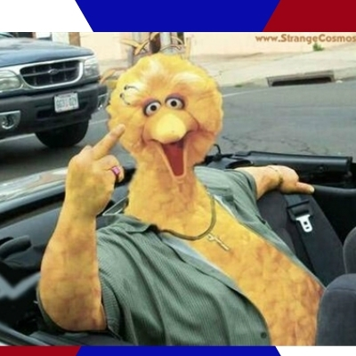 Big Bird Middle Finger