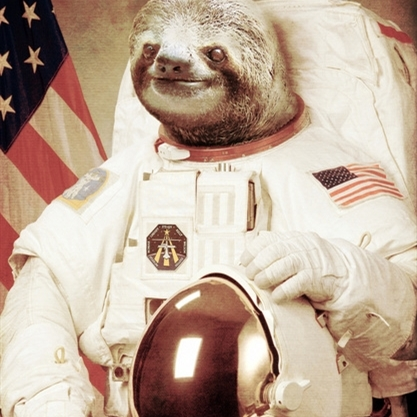 space sloth