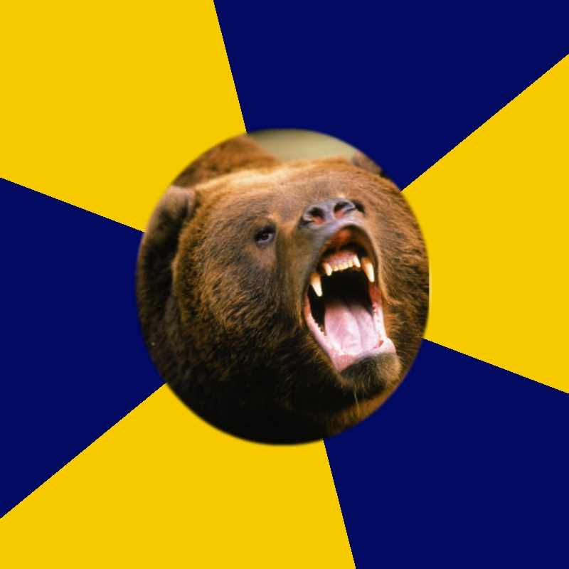 Berkeley Student Bear