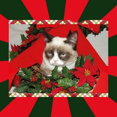 GRUMPY CAT ON CHRISTMAS