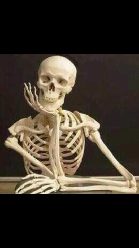 still waiting on trump to condemn white supremacy