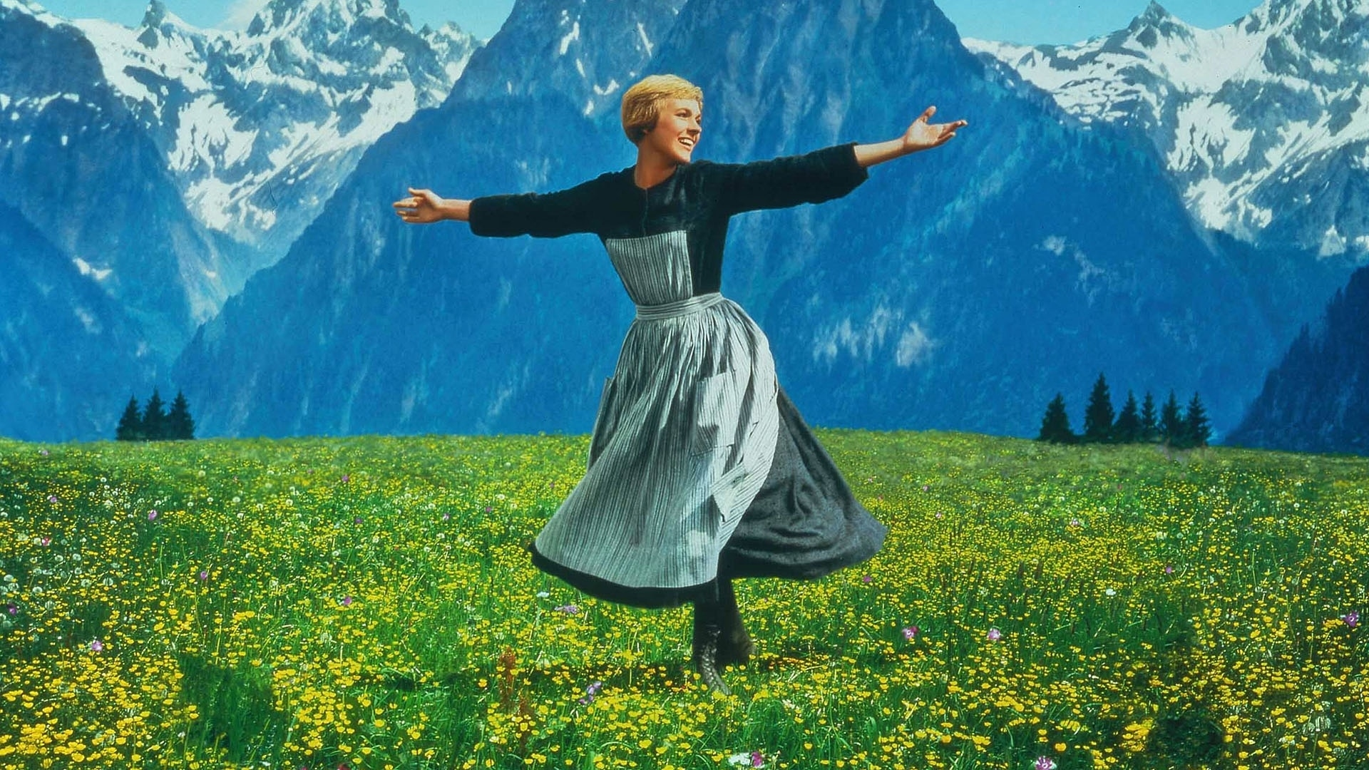 Look at all these The Sound of Music