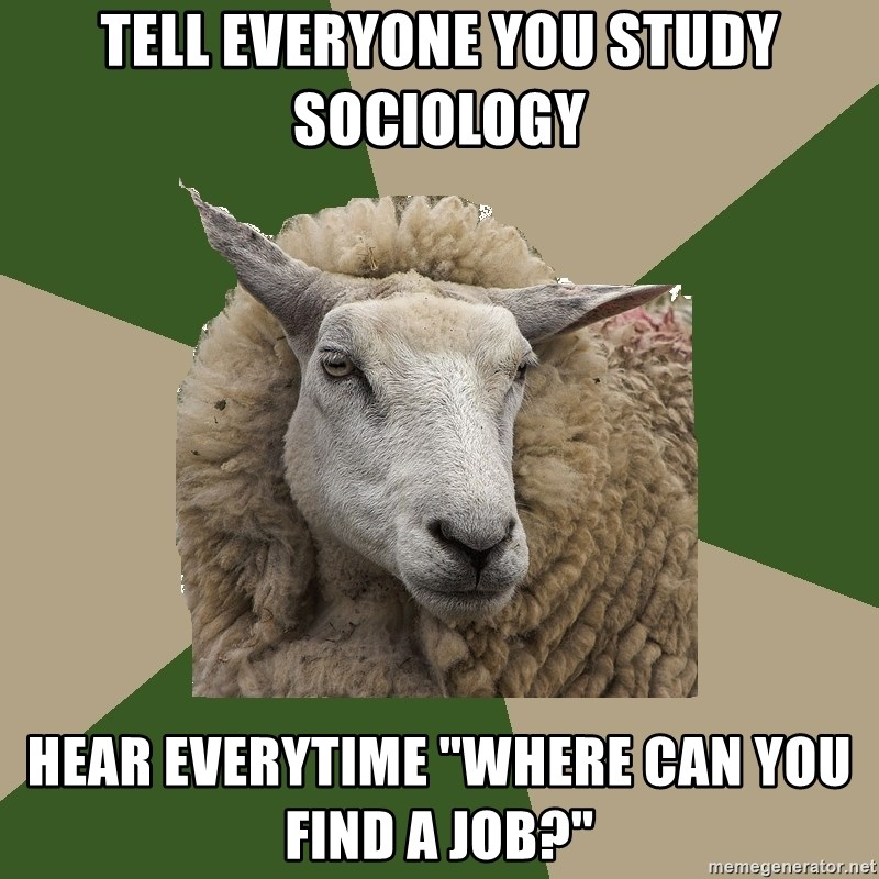 """Sociology Student Sheep - Tell Everyone you study sociology Hear everytime """"Where can you find a job?"""""""