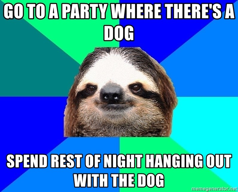 Socially Lazy Sloth - go to a party where there's a dog spend rest of night hanging out with the dog