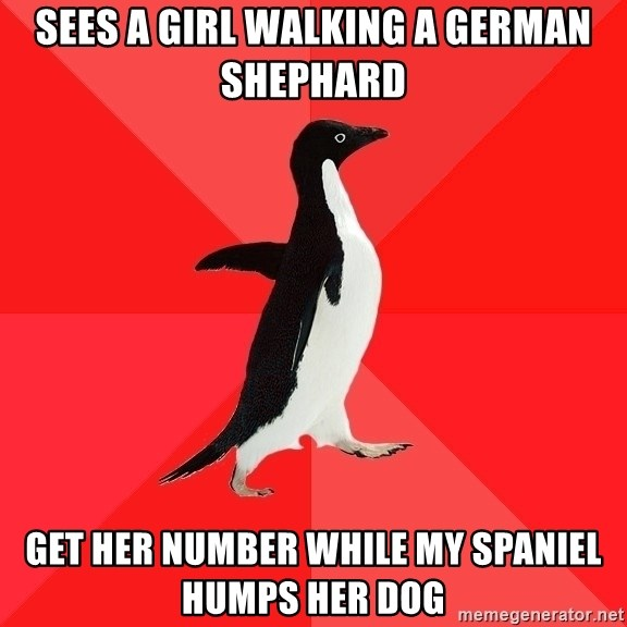 Socially Awesome Penguin - Sees a girl walking a german shephard get her number while my spaniel humps her dog