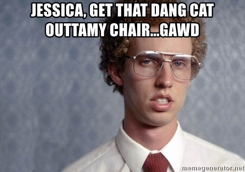 Napoleon Dynamite - Jessica, get that dang cat outtamy chair...gawd