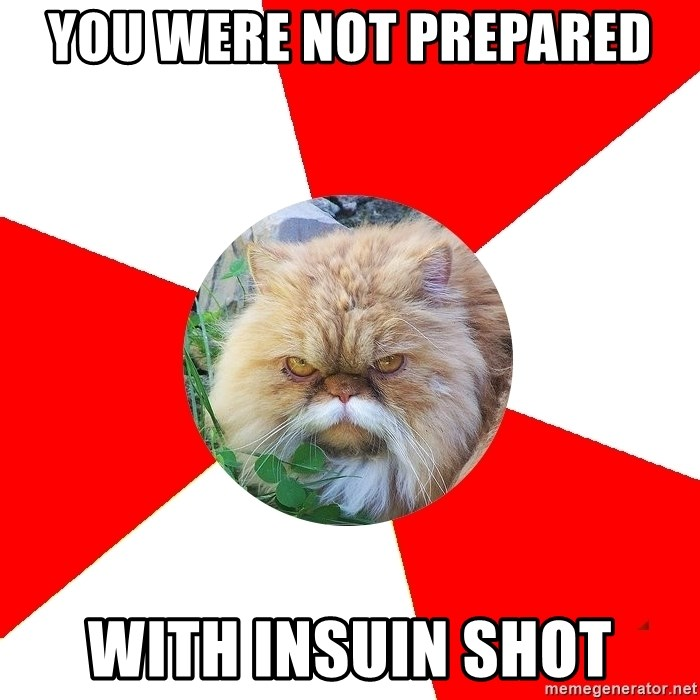 Diabetic Cat - You were not prepared with insuin shot