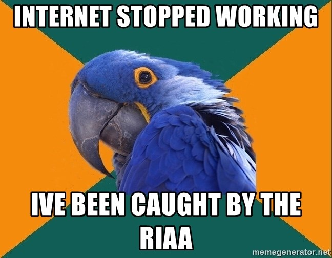 Paranoid Parrot - internet stopped working ive been caught by the riaa