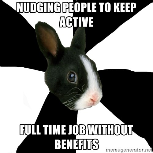 Roleplaying Rabbit - nudging people to keep active full time job without benefits