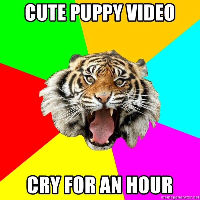 Time Of The Month Tiger - Cute puppy video cry for an hour