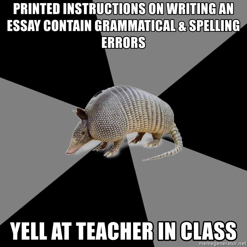 English Major Armadillo - printed instructions on writing an essay contain grammatical & spelling errors yell at teacher in class
