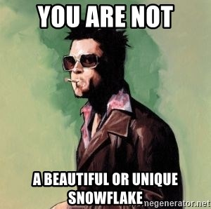 Tyler Durden 2 - YOU ARE not a beautiful or unique snowflake