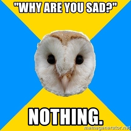 """Bipolar Owl - """"Why are you sad?"""" nothing."""
