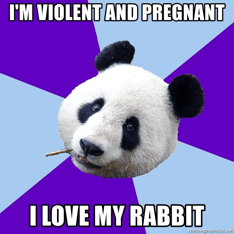 Phts Panda - I'm violent and pregnant i love my rabbit