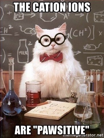 """Chemistry Cat - The CATion ions  aRE """"PAWSITIVE"""""""