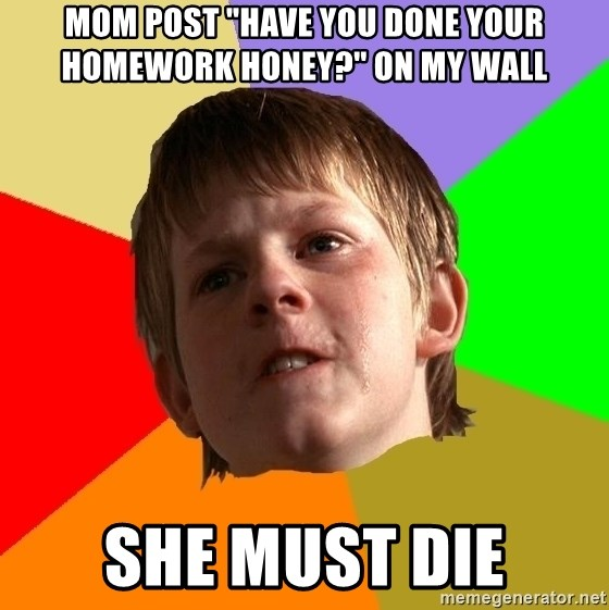 "Angry School Boy - mom post ""have you done your homework honey?"" on my wall SHE MUST DIE"
