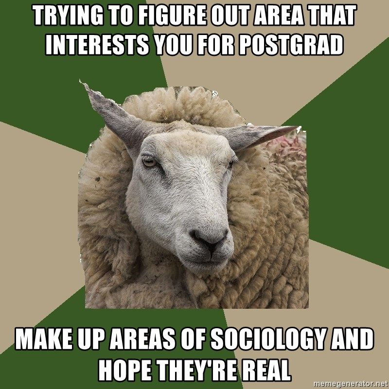 Sociology Student Sheep - trying to figure out area that interests you for postgrad make up areas of sociology and hope they're real