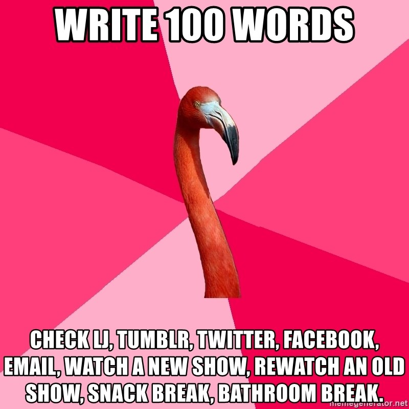 Fanfic Flamingo - write 100 words check lj, tumblr, twitter, facebook, email, watch a new show, rewatch an old show, snack break, bathroom break.