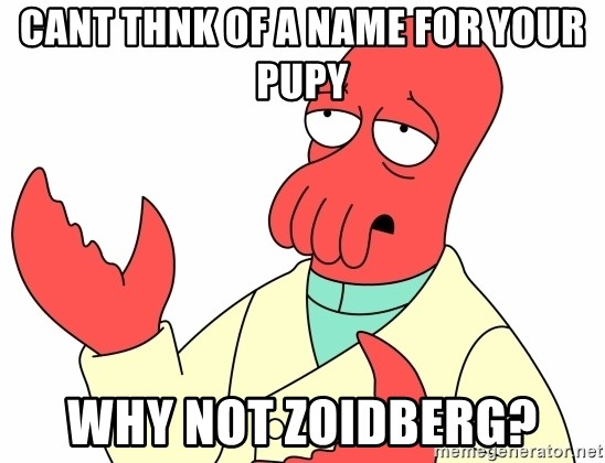 Why not zoidberg? - Cant thnk of a name for your pupy why not zoidberg?