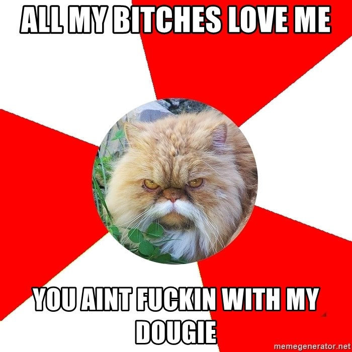 Diabetic Cat - all my bitches love me you aint fuckin with my dougie