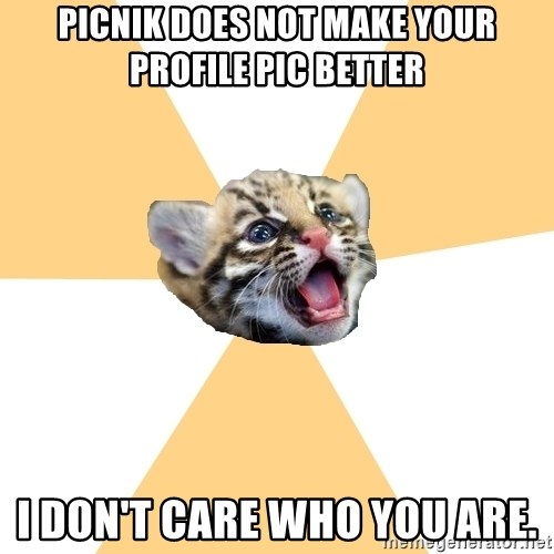 facebook roleplay ocelot - picnik does not make your profile pic better i don't care who you are.