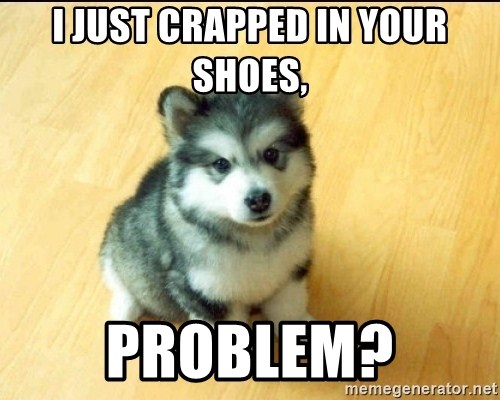 Baby Courage Wolf - I just crapped in your shoes, problem?