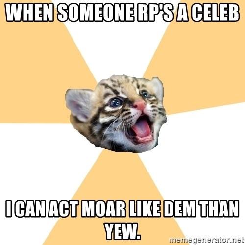 facebook roleplay ocelot - when someone rp's a celeb  i can act moar like dem than yew.