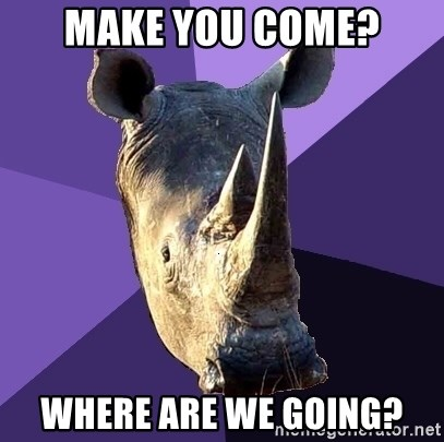Sexually Oblivious Rhino - make you come? where are we going?