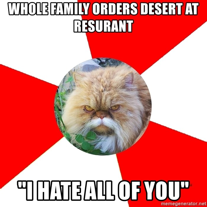 """Diabetic Cat - Whole family orders desert at resurant """"I hate all of you"""""""