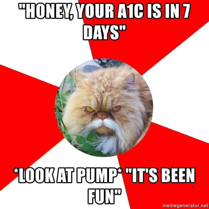 """Diabetic Cat - """"Honey, Your A1C is in 7 DAYS"""" *LOOK AT PUMP* """"it'S BEEN FUN"""""""