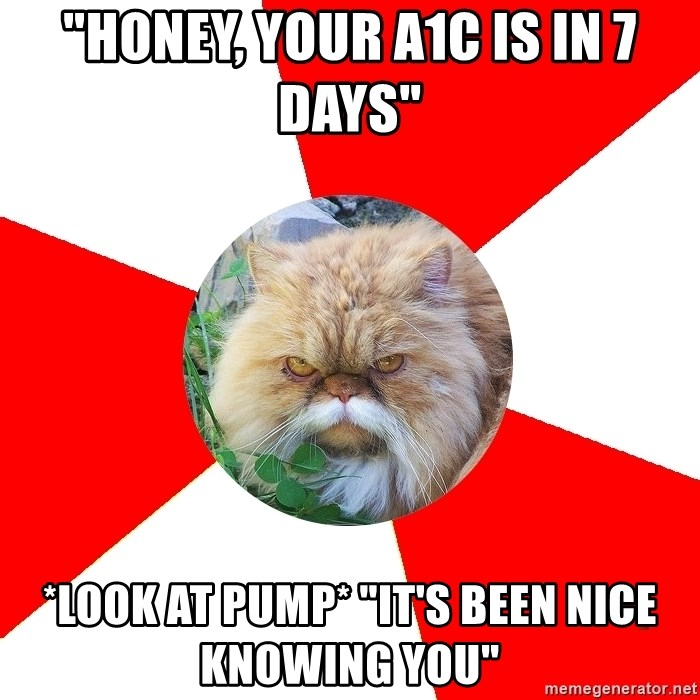 "Diabetic Cat - ""Honey, Your A1C is in 7 DAYS"" *LOOK AT PUMP* ""it'S BEEN NICE KNOWING YOU"""