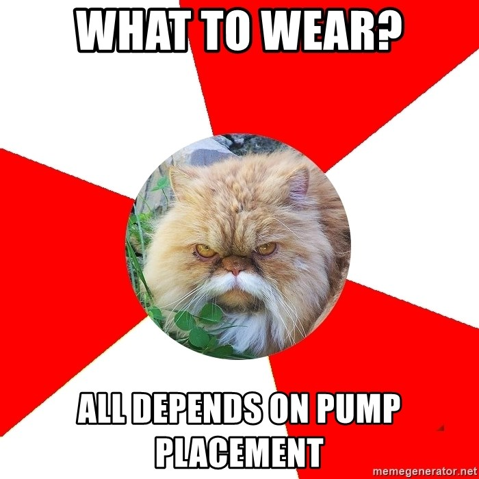 Diabetic Cat - WHAT TO WEAR? ALL DEPENDS ON PUMP PLACEMENT