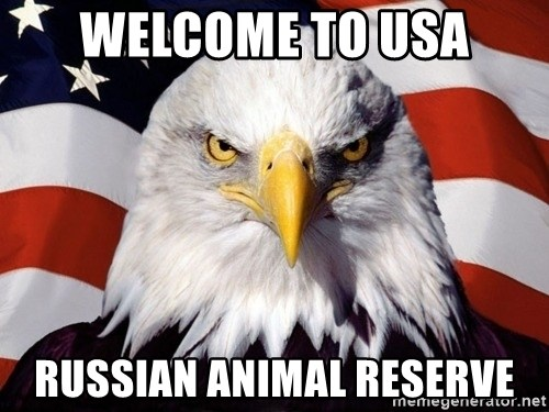 American Pride Eagle - welcome to usa Russian animal reserve