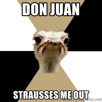 Music Major Ostrich - don juan strausses me out