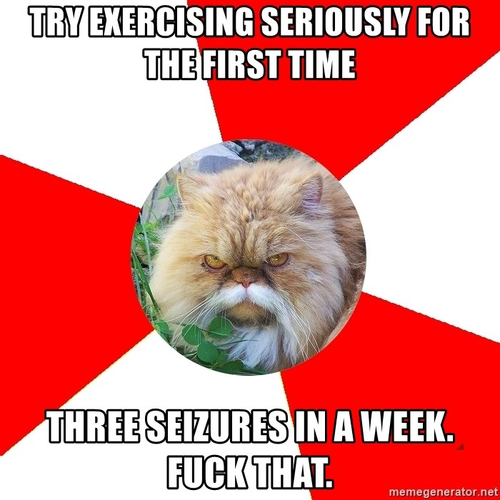 Diabetic Cat - TRY EXERCISING seriously for the first time three seizures in a week. fuck that.