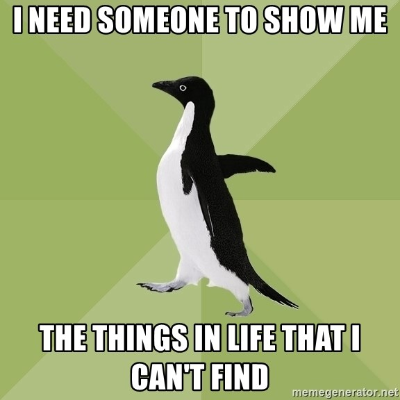 Socially Average Penguin - I need someone to show me the things in life that I can't find