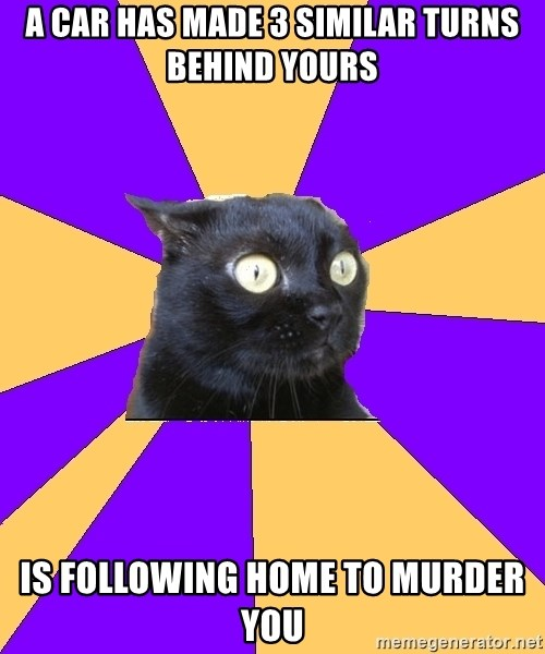 Anxiety Cat - a car has made 3 similar turns behind yours is following home to murder you
