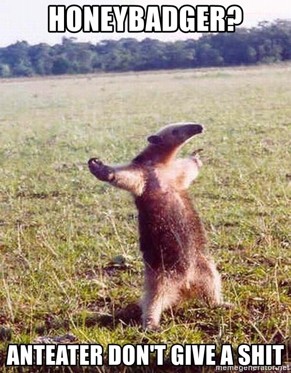Anteater - Honeybadger? ANteater don't give a shit