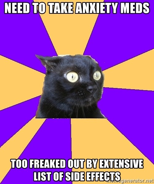Anxiety Cat - NEED TO TAKE ANXIETY MEDS TOO FREAKED OUT BY EXTENSIVE LIST OF SIDE EFFECTS