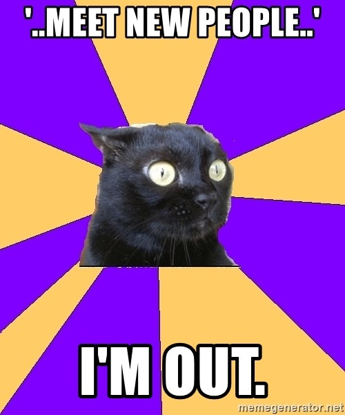Anxiety Cat - '..meet new people..' i'm out.