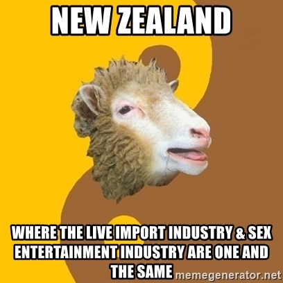 Sheep Obscurantist - New zealand WHERE THE LIVE IMPORT INDUSTRY & SEX ENTERTAINMENT INDUSTRY are one and the same
