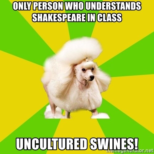 Pretentious Theatre Kid Poodle - ONLY person who understands shakespeare in class uncultured swines!