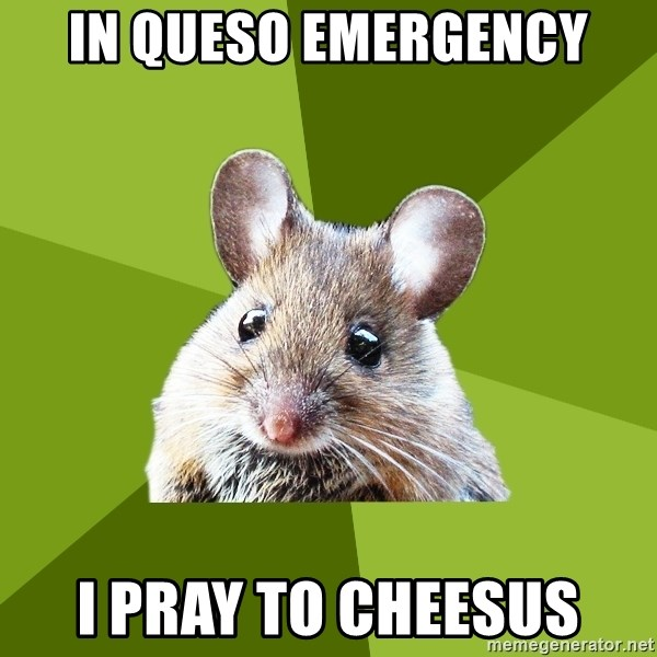 Prospective Museum Professional Mouse - In queso emergency i pray to cheesus